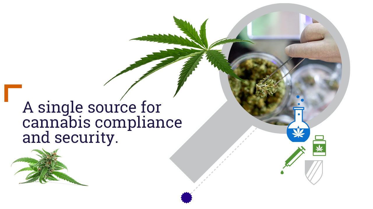 A single source for cannabis compliance and security